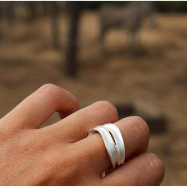 Δαχτυλίδι Ροή