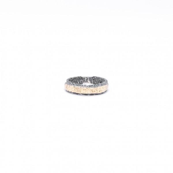Χρυσό και ασημένιο δαχτυλίδι